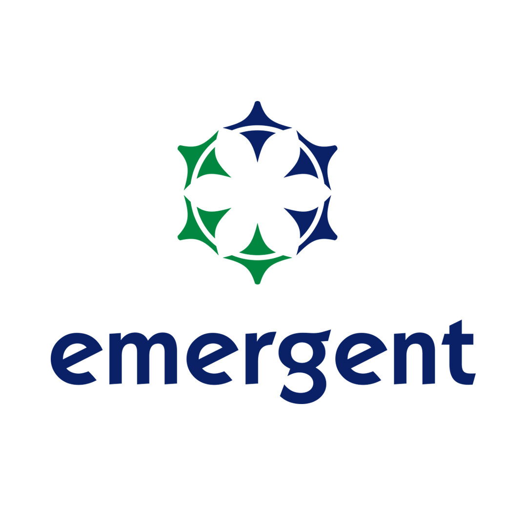 emergent-instagram-01